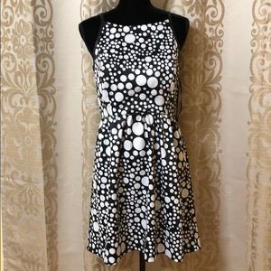 Kensie black polka dots dress w/ faux leather trim